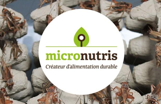 Micronutris-2