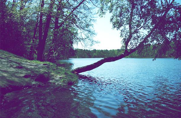 lacs autour de toulouse
